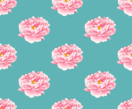 Pink Peony on Green Teal Background. Vector Illustration.