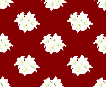 White Amaryllis on Red Background. Vector Illustration. Illustration
