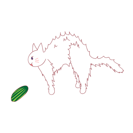 Cat Scared from seeing Cucumber.