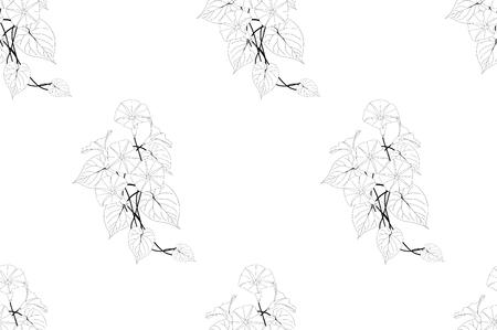 Morning Glory Seamless on White Background. Vector Illustration. Иллюстрация