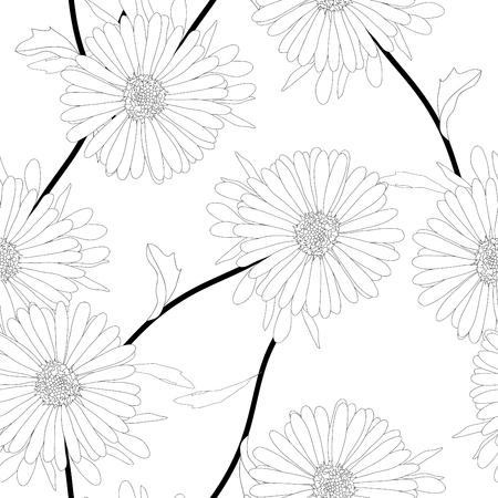 Asterblume auf weißem Hintergrund. Vektor-Illustration. Standard-Bild - 92175277