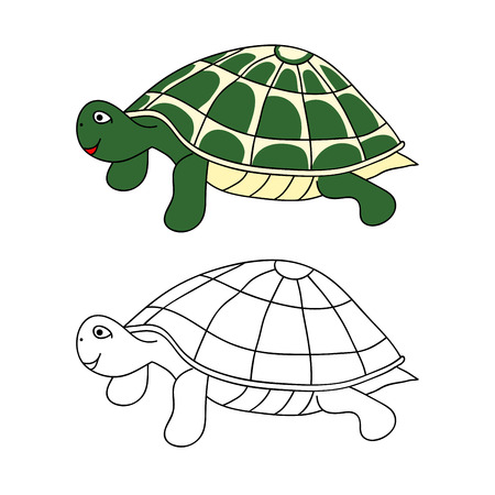 Green Turtle Vector Illustration. isolated on White Background.