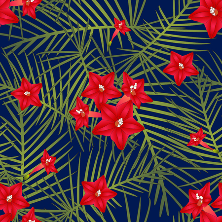 Ipomoea Quamoclit - Cypress Vine Flower on Navy Blue Background. Vector Illustration.
