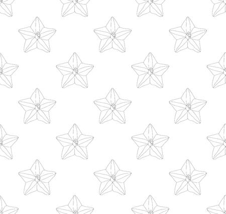 Ipomoea Quamoclit - Cypress Vine Flower on Outline Background. Vector Illustration.