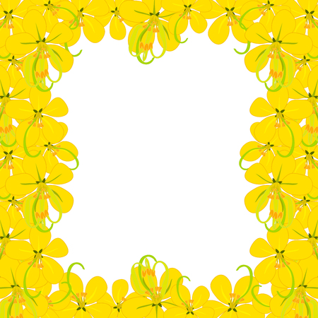 Yellow Cassia Fistula - Golden Shower Flower on White Background with copy space. Vector Illustration.