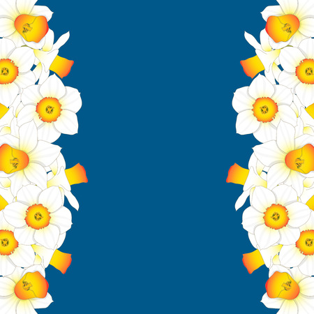 Daffodill - Narcissus Border on Indigo Blue Background. Vector Illustration.