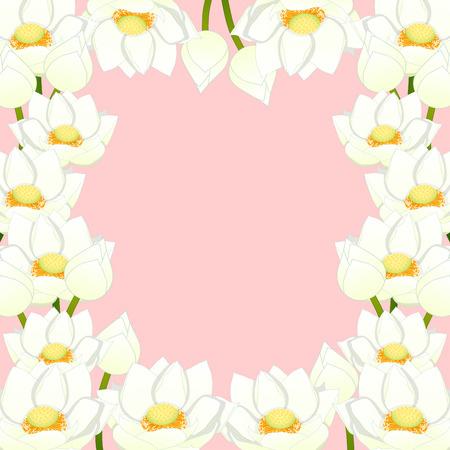 Nelumbo nucifera - Indian lotus Border, sacred lotus, bean of India, Egyptian bean. National flower of India and Vietnam. Vector Illustration. isolated on White Background. Illustration