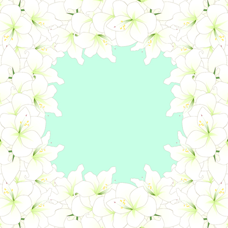 White Amaryllis Border - Hippeastrum. Christmas Flower. Vector Illustration. isolated on Green Mint Background. Illustration