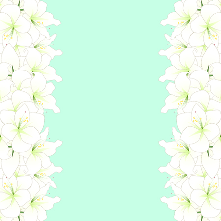 White Amaryllis Border - Hippeastrum. Christmas Flower. Vector Illustration. isolated on Green Mint Background. Foto de archivo - 103938386