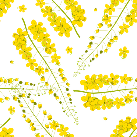 Cassia Fistula - Golden Shower Flower on White Background. Vector Illustration