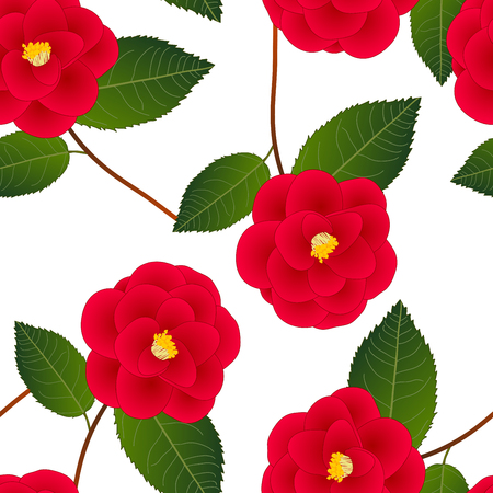 Red Camellia Flower on White Background. Vector Illustration.