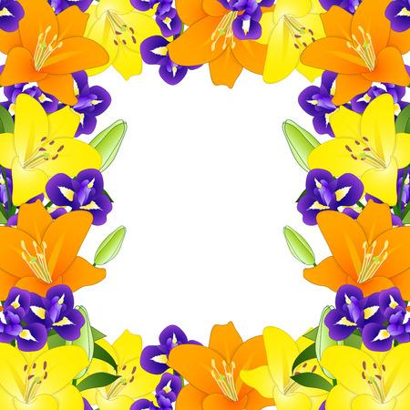 Yellow, Orange Lily and Blue Iris Flower Border on White Background. Vector Illustration.