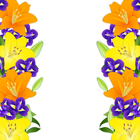Yellow, Orange Lily and Blue Iris Flower Border on White Background. Vector Illustration.
