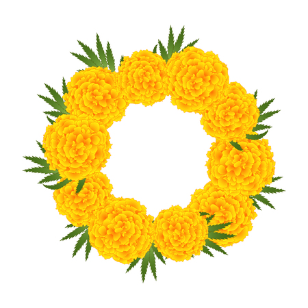 Marigold Flower - Tagetes Wreath isolated on White Background. Vector Illustration.