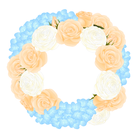 Orange Rose, Blue Hydrangea and White Ranunculus Wreath. isolated on White Background. Vector Illustration. Standard-Bild - 104164217