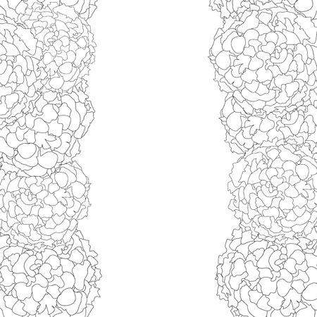 Marigold Outline Border isolated on White Background. Vector Illustration.
