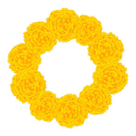 Marigold Flower - Tagetes Wreath isolated on White Background. Vector Illustration. Ilustrace