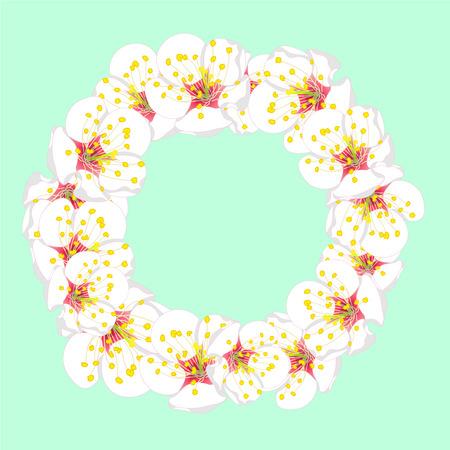 White Plum Blossom Flower Wreath isolated on Green Mint Background. Vector Illustration.