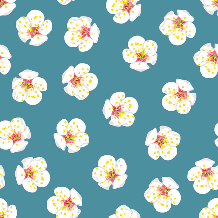 White Plum Blossom Flower Seamless on Blue Background. Vector Illustration.
