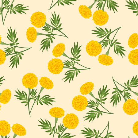 Yellow Marigold Seamless on Beige Ivory Background. Vector Illustration.