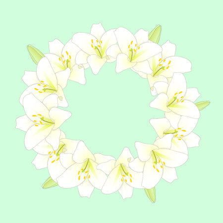 White Lily Flower Wreath on Green Mint Background. Vector Illustration.
