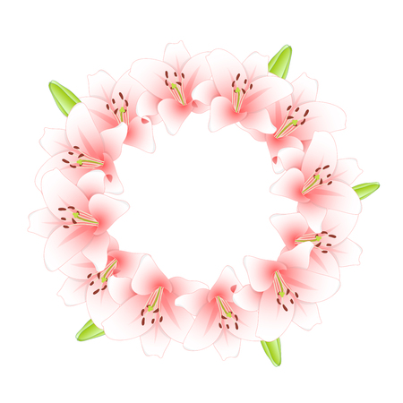 Pink Lily Flower Wreath isolated on White Background. Vector Illustration.