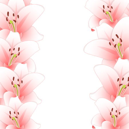Pink Lily Flower Border isolated on White Background. Vector Illustration.