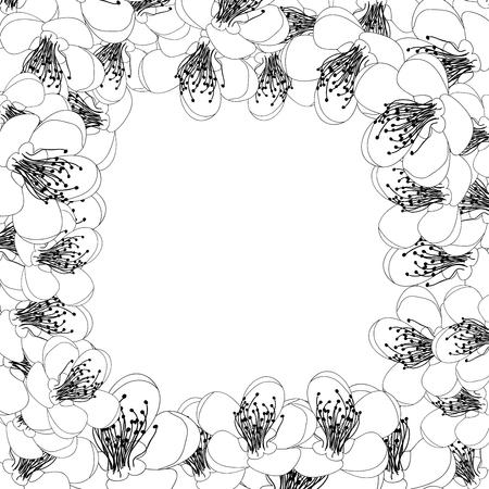 Momo Peach Flower Blossom Border Outline. Vector Illustration.