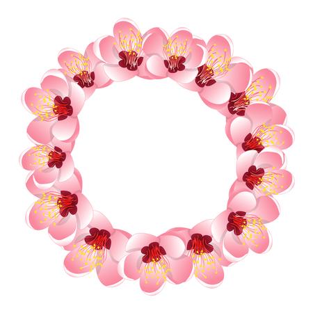 Momo Peach Flower Blossom Wreath. Vector Illustration. Çizim
