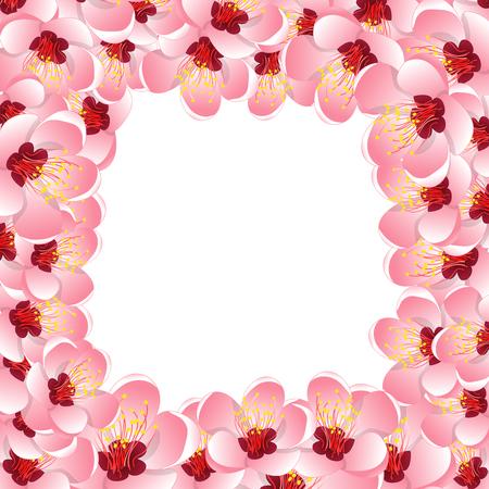 Momo Peach Flower Blossom Border Background. Vector Illustration.