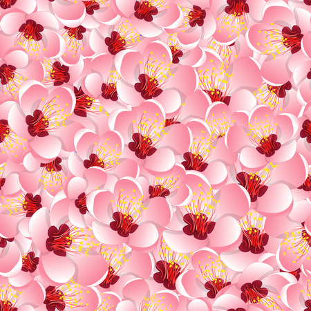 Momo Peach Flower Blossom Seamless Background. Vector Illustration.