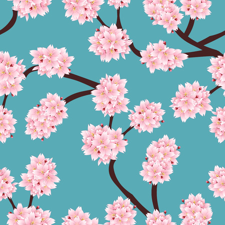 Prunus serrulata Outline - Cherry blossom, Sakura on Blue Background. Vector Illustration.