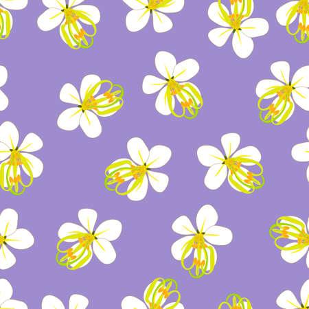 Cassia Fistula - Golden Shower Flower on Purple Background. Vector Illustration