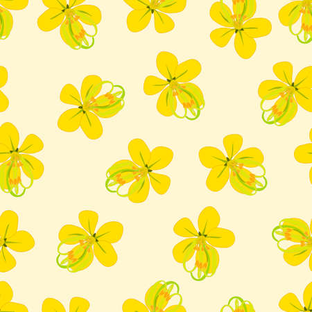 Cassia Fistula - Golden Shower Flower on Beige Ivory Background. Vector Illustration