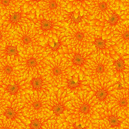 Yellow Chrysanthemum Seamless Background. Vector Illustration. 矢量图像