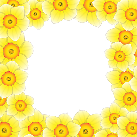 Yellow Daffodil - Narcissus Flower Border. Vector Illustration.
