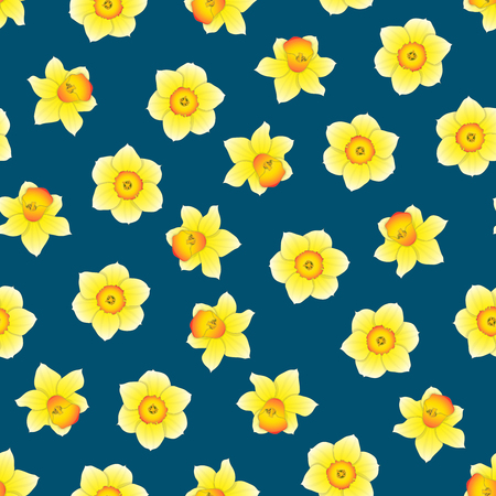Yellow Daffodil - Narcissus Flower on Indigo Blue Background. Vector Illustration.
