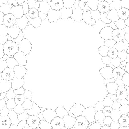 Daffodil - Narcissus Flower Outline Border. Vector Illustration. 向量圖像