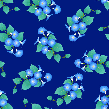 Blue Morning Glory on Navy Blue Background. Vector Illustration. Иллюстрация