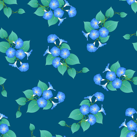 Blue Morning Glory on Green Teal Background. Vector Illustration.