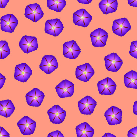 Purple Morning Glory Flower on Orange Background. Vector Illustration.