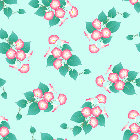 Pink Morning Glory on Green Mint Background. Vector Illustration. Иллюстрация