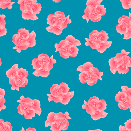 Dianthus caryophyllus - Pink Carnation Flower on Blue Background. Vector Illustration.