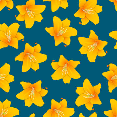 Lilium candidum, the Madonna lily or Orange Lily on Indigo Blue Background. Vector Illustration. 일러스트
