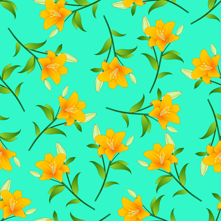 Lilium candidum, the Madonna lily or Orange Lily on Green Mint Background. Vector Illustration.