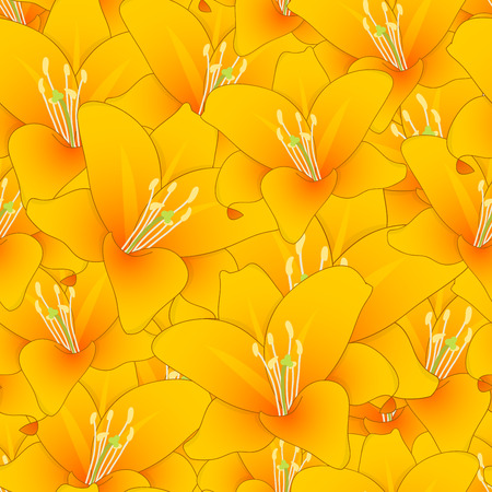 Lilium candidum, the Madonna lily or Orange Lily Seamless Background. Vector Illustration.