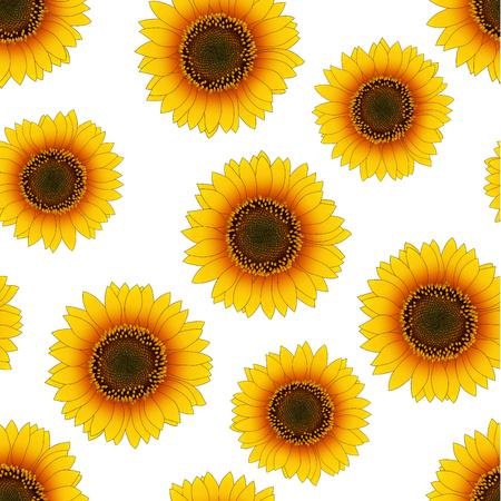 Orange Yellow Sunflower Seamless on White Background. Vector Illustration.  イラスト・ベクター素材