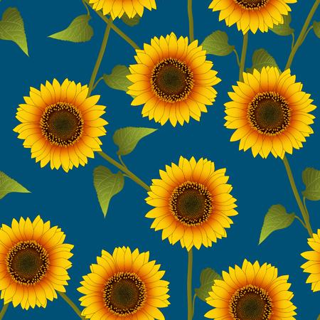 Orange Yellow Sunflower on Indigo Blue Background. Vector Illustration.