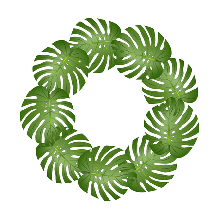Philodendron Monstera Leaf Wreath isolated on White Background. Vector Illustration. Vettoriali