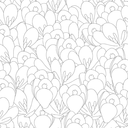 White Crocus Flower Outline Seamless Background. Vector Illustration. Illustration